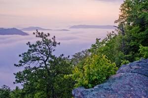 pine-mountain-sunrise-512