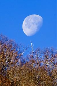 moon 179