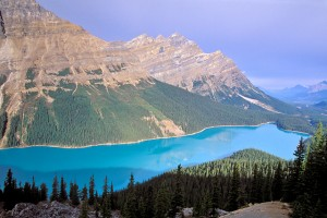 CR Banff NP Peyto Lake