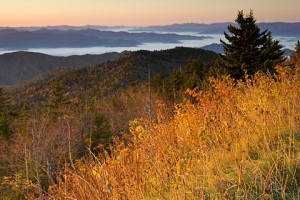 Clingmans Dome sunrise 379