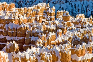 Bryce Canyon 802