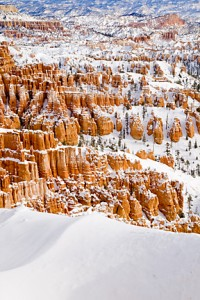 Bryce Canyon 959