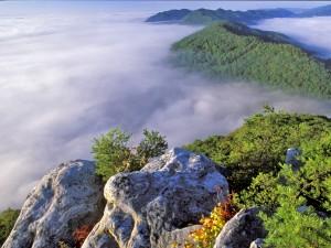 Pinnacle Overlook fog (h) cr