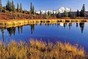 AK Denali NP Nugget Pond 2