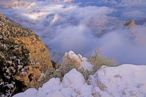 Winter Grand Canyon 2 (h) cr