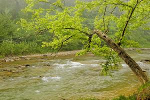 Otter Creek Park creek scenic