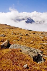 CO Rocky Mountain NP tundra 003